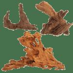 Decor_Roots_Mangrove