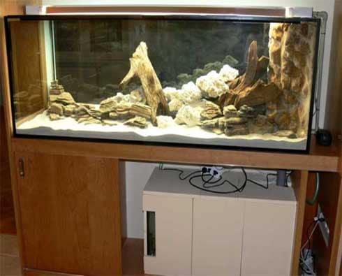 Založenie akvária