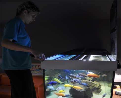 Servis akvária