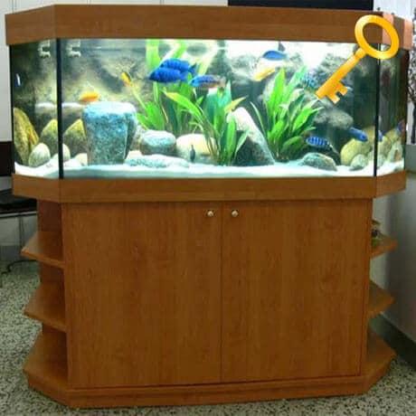 Polit akvárium na kľúč