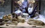 Realizácia akvárium 4200 l